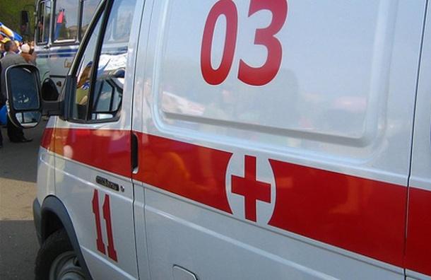 Двое рабочих сорвались сподвесной люльки настройке вПетербурге, один умер