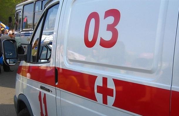 ВПушкине на17-летнюю девушку упал дорожный знак