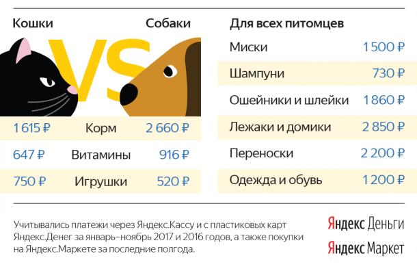 «Яндекс» узнал, сколько граждане Северо-Запада растрачивают на домашних питомцев