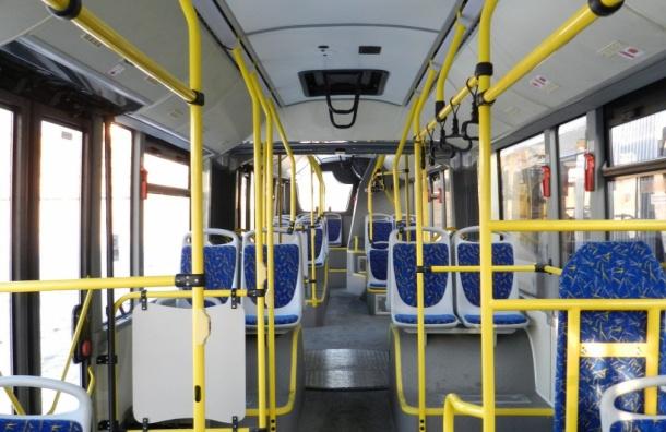 Названы самые популярные автобусные маршруты Петербурга