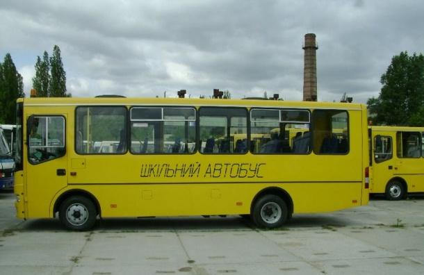 Правительство предлагает обеспечить бесплатную перевозку школьников