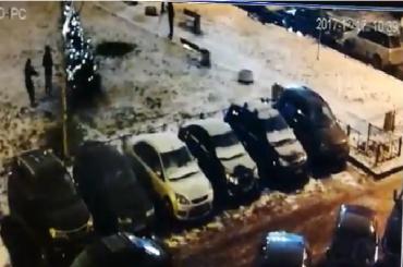 Вандалы сломали новогоднюю ель наБудапештской