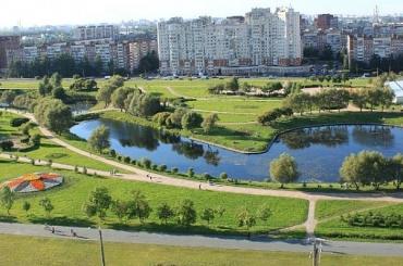 «Единая Россия» отклонила большинство поправок поспасению зеленых зон Петербурга