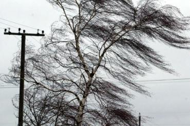 Усиление ветра ожидается вПетербурге