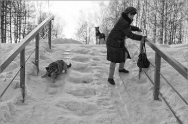 Смольный запустил горячую линию для жалоб науборку снега