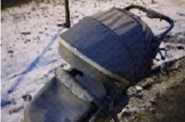 Угонщики детской коляски задержаны вПушкине