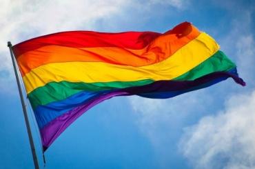 Отказ всогласовании вЛГБТ-акций обжаловали вгорсуде