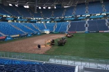 Газон настадионе «Санкт-Петербург» снова меняют