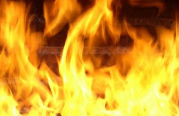 Три человека погибли при пожаре вгороде Любань