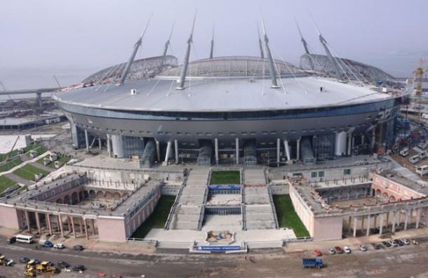 Собаки вспахали газон настадионе «Санкт-Петербург»