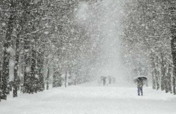 Главный синоптик: Снегопад снова накроет Петербург вконце рабочей недели