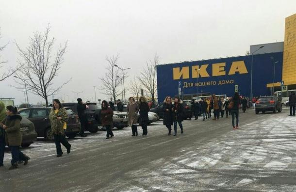 Свидетели: из«МЕГА Дыбенко» эвакуировали гостей