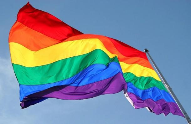 Вцентр европейского гей-туризма хотят превратить Петербург активисты