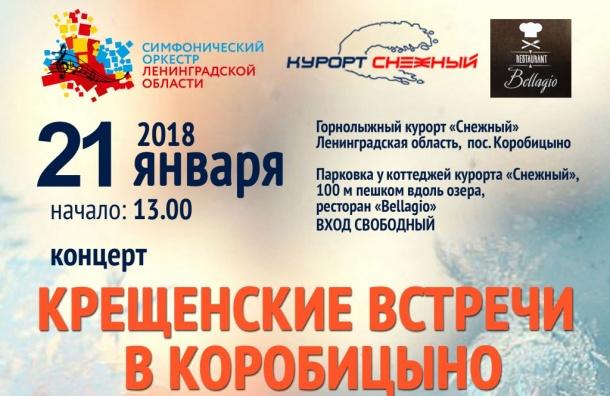 Симфонический оркестр Ленинградской области выступит нагорнолыжном курорте