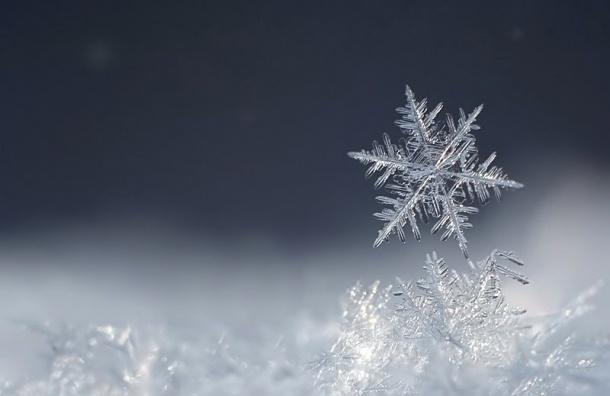 Вначале рабочей недели температура воздуха вПетербурге будет колебаться около нуля