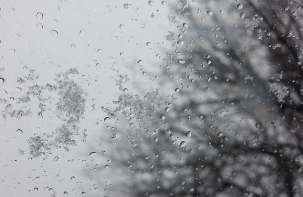 Ввоскресенье вгород вернётся зима— Главный синоптик Петербурга