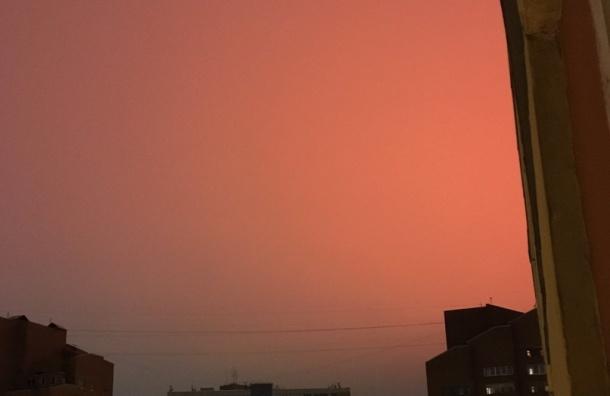 Красное небо наблюдали жители Петербурга