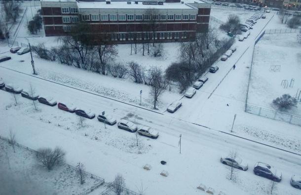 Новый год вСеверной столице начнется смокрого снега идождя