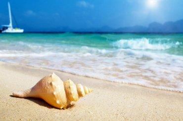 Туроператор Coral Travel продал путевки ипропал
