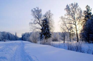 Застройку Баболовского парка признали незаконной