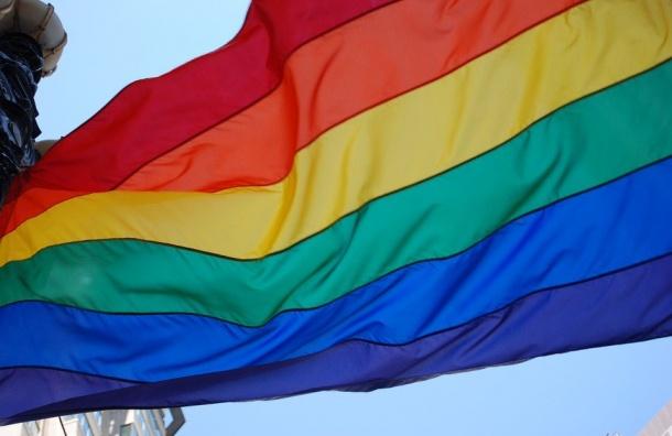 Петербургский суд принял иск опроведении гей-митингов