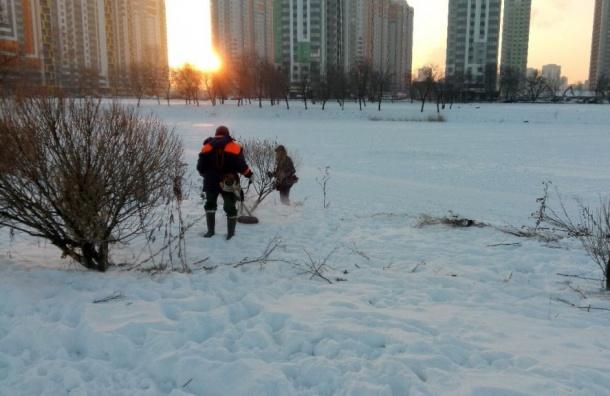 Коммунальщики «покосили» снег впарке Интернационалистов