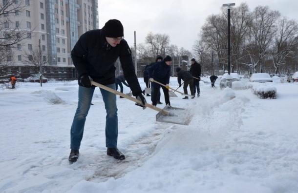 Петербургских чиновников отправили убирать снег