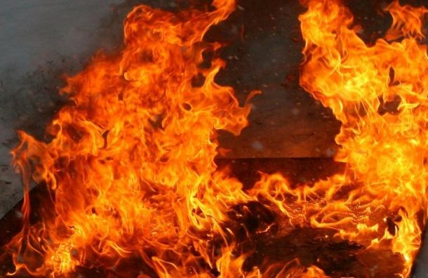 Два человека сгорели всарае вПетербурге