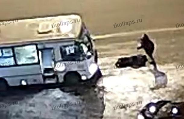 Забившего досмерти водителя маршрутки вКрасном Селе пассажира задержали