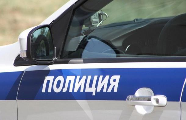 Хулиганы устроили массовую драку иразбили машину наВасильевском острове