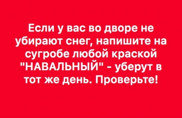 Именем Навального очищаются улицы