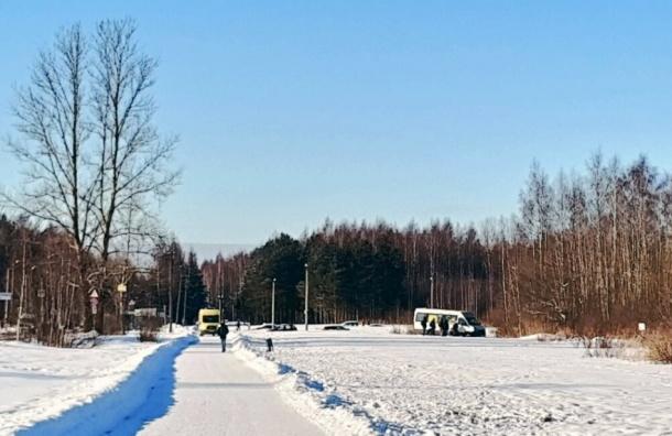 Водитель маршрутки потерял сознание зарулем