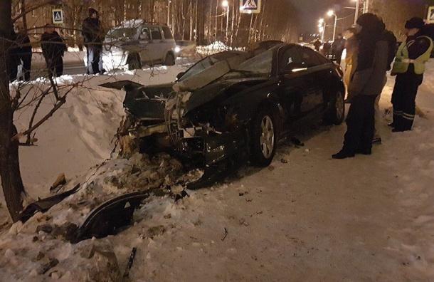 Водитель иномарки погиб вДТП вЛенобласти