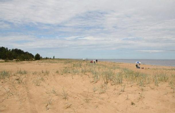 Частные пляжи могут появиться вЛенобласти