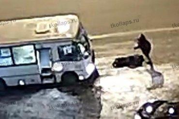 Убившего водителя маршрутки в Красном Селе пассажира задержали