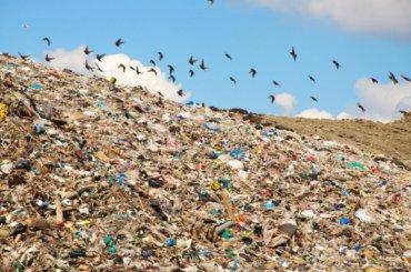 Вывоз мусора подорожает вПетербурге