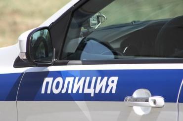 Жительница Ленобласти заставила полицейских искать еесумочку