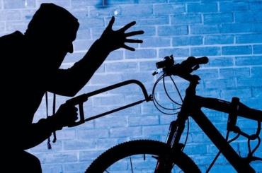 Петербургская полиция разоблачила похитителя велосипедов