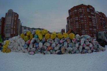 Петербуржцы собрали 6 тонн вторсырья