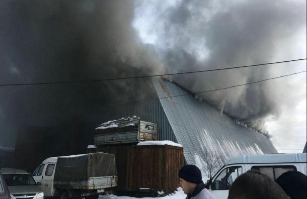 Появилось видео пожара вКурортном районе