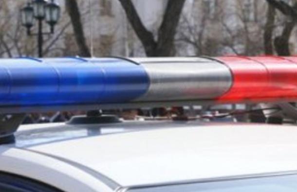 Автомобилист насмерть сбил женщину напроспекте Маршала Жукова