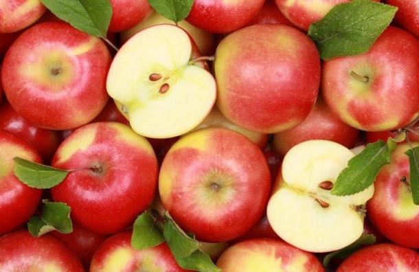 Польские иукраинские яблоки игруши уничтожат вПетербурге
