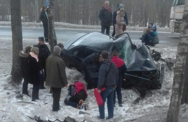 Пожилой водитель сребенком врезался вдеревья наМурманском шоссе