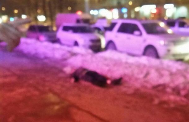 Пассажир досмерти избил таксиста вПетербурге