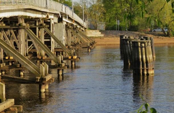 Второй Елагин мост отремонтируют вПетербурге