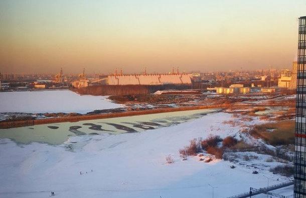 ВПетербурге водохранилище получило зеленый цвет и кошмарный запах— свидетели