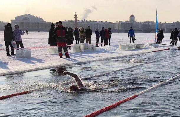Моржи устроили заплыв рядом сПетропавловской крепостью