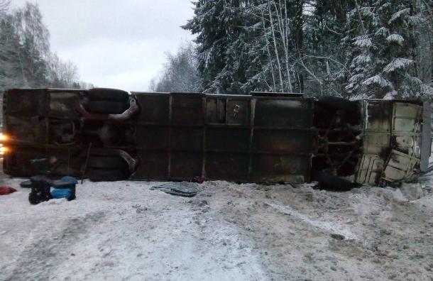 Десять детей пострадали в трагедии  савтобусом наЛенинградском шоссе