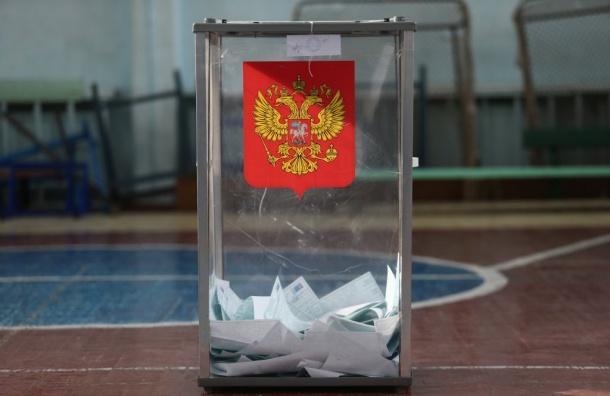 Наблюдатель изСША назвал выборы вРоссии честными иоткрытыми