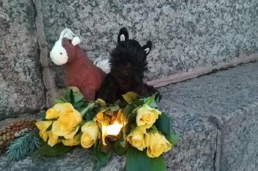 Блогеры массово опровергают информацию о«сотнях погибших» вКемерове